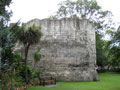 Multangular Tower photo Charles Taylor
